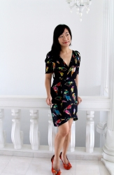 Birds wrap dress